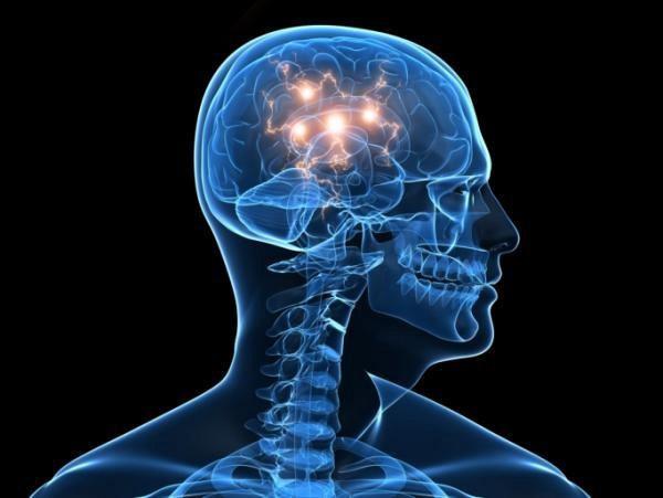 neurociencia neuroespiritualidade
